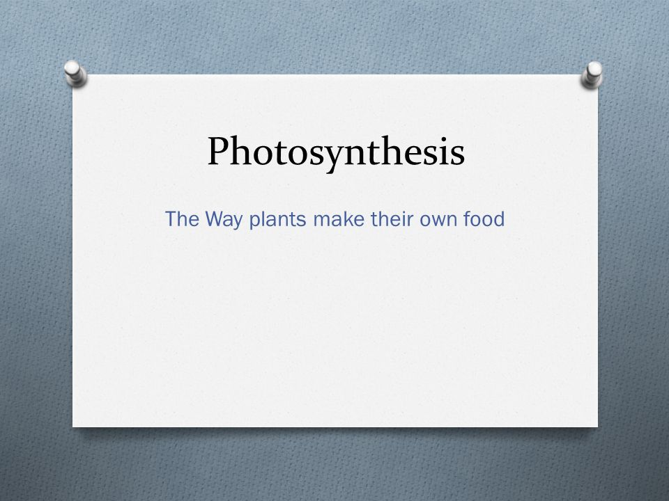 Photosynthesis The Way plants make their own food
