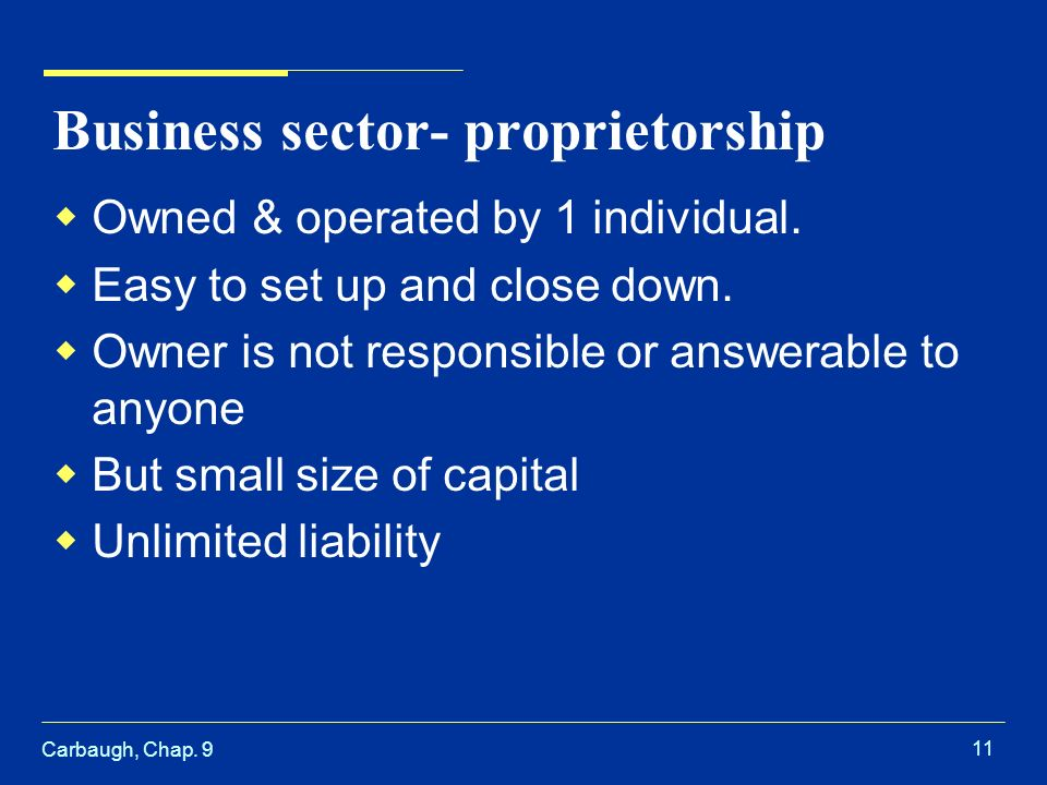 Carbaugh, Chap Business sector- proprietorship  Owned & operated by 1 individual.