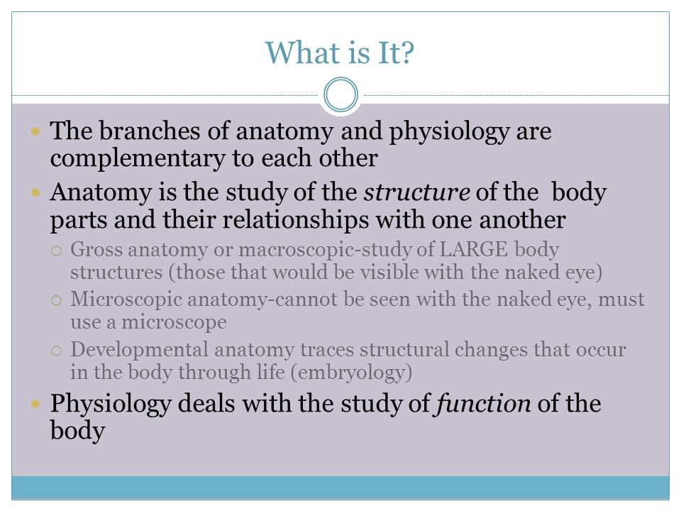 Overview of Anatomy and Physiology. What is It? The branches of ...