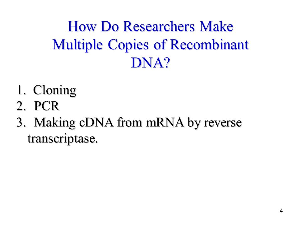 4 How Do Researchers Make Multiple Copies of Recombinant DNA.
