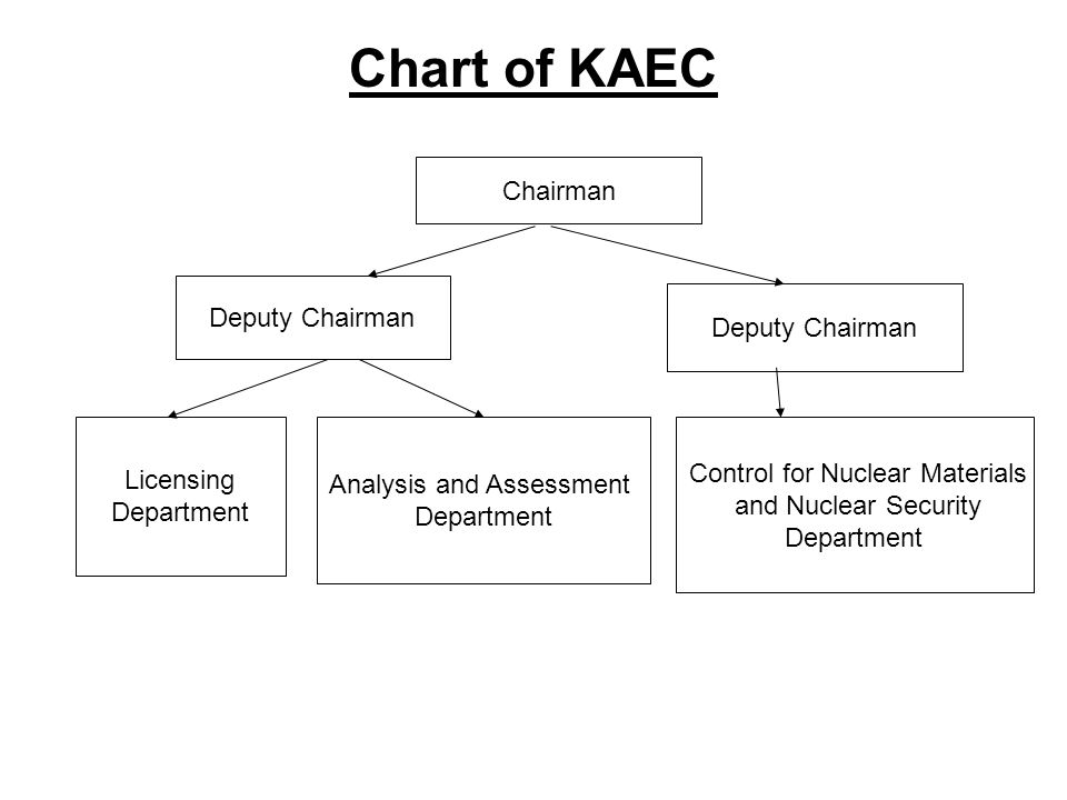 Chart of KAEC Chairman Deputy Chairman Licensing Department Analysis and Assessment Department Control for Nuclear Materials and Nuclear Security Department