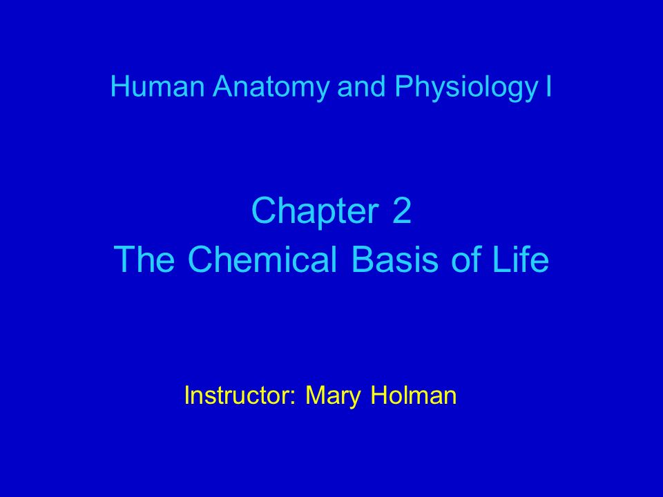Human Anatomy and Physiology I Chapter 2 The Chemical Basis of Life Instructor: Mary Holman