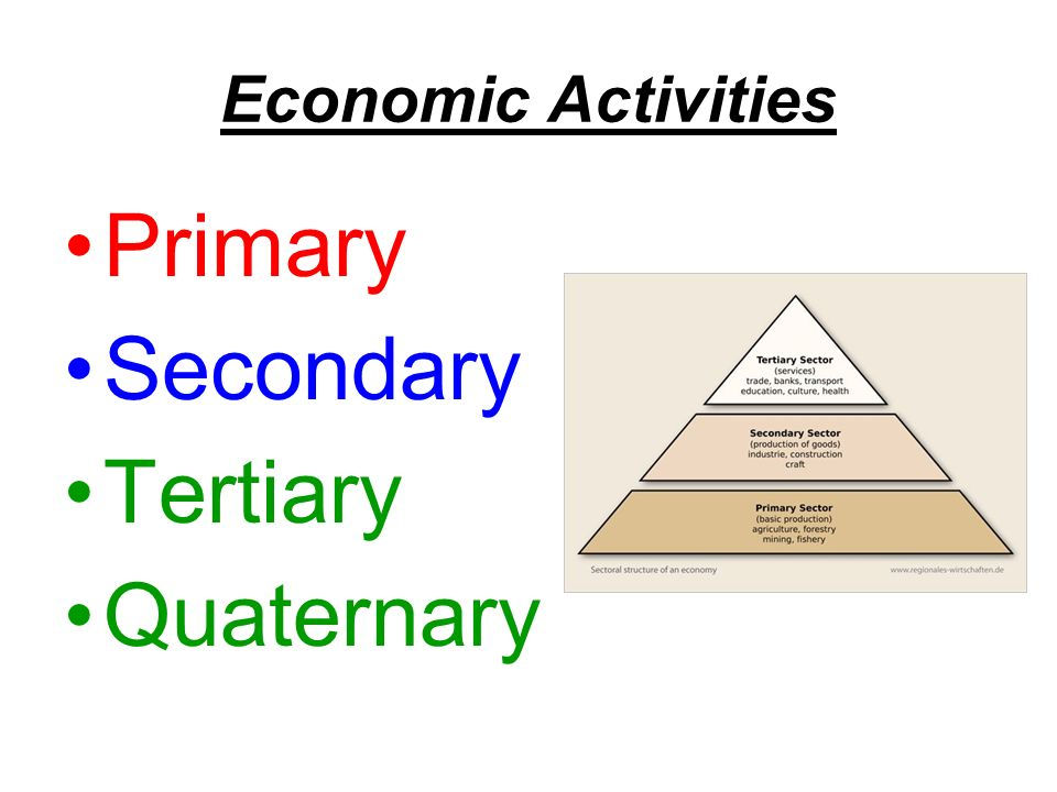 Economic Activities Primary Secondary Tertiary Quaternary
