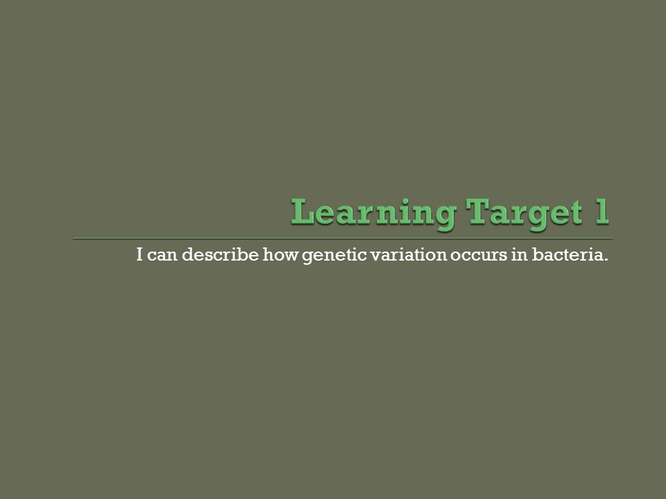 I can describe how genetic variation occurs in bacteria.