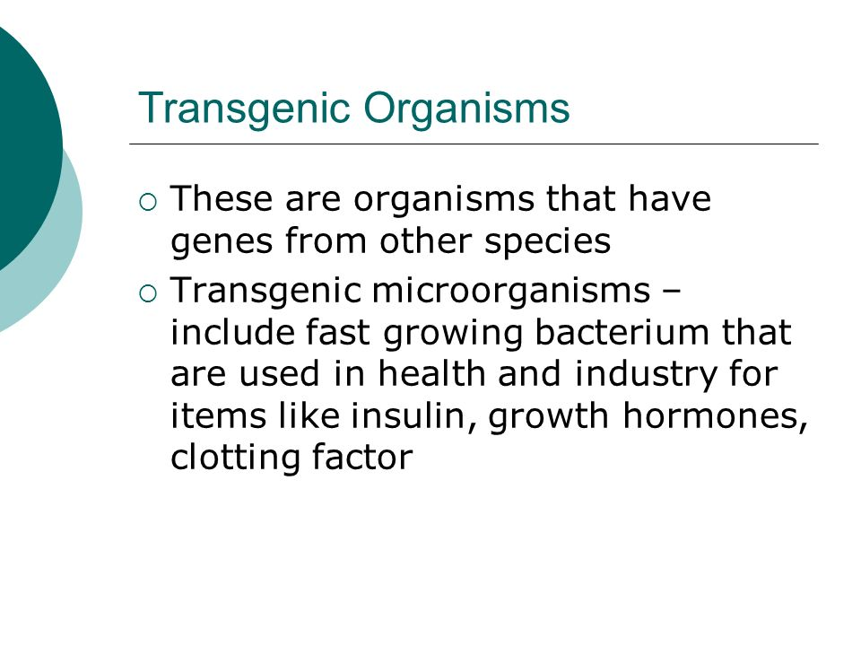 Transgenic Organisms  These are organisms that have genes from other species  Transgenic microorganisms – include fast growing bacterium that are used in health and industry for items like insulin, growth hormones, clotting factor