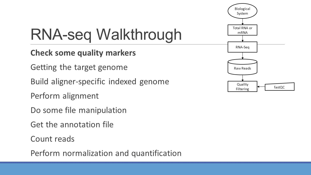 RNA-seq Walkthrough Check some quality markers Getting the target genome Build aligner-specific indexed genome Perform alignment Do some file manipulation Get the annotation file Count reads Perform normalization and quantification Total RNA or mRNA RNA-Seq Quality Filtering Raw Reads Biological System fastQC