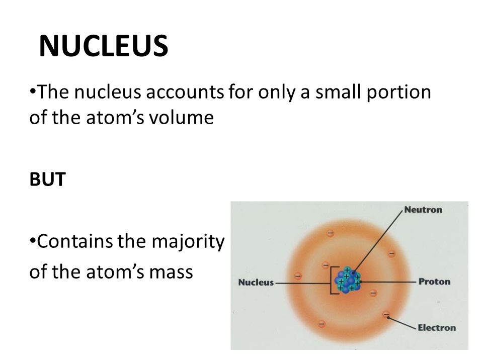 NUCLEUS The nucleus accounts for only a small portion of the atom's volume BUT Contains the majority of the atom's mass