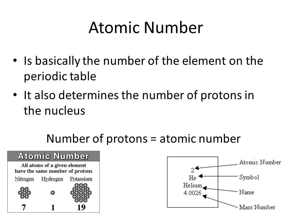 Atomic Number Is basically the number of the element on the periodic table It also determines the number of protons in the nucleus Number of protons = atomic number