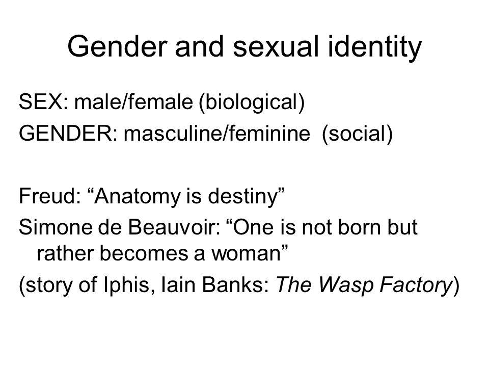 Subjectivity And Identity Novelistic And Film Plot Bildung The
