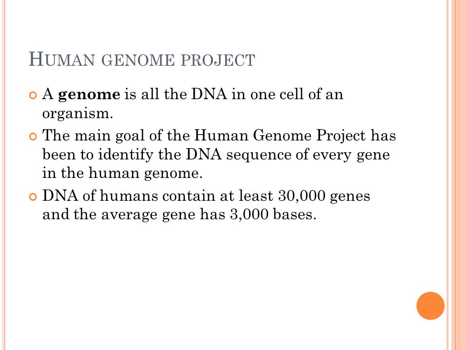H UMAN GENOME PROJECT A genome is all the DNA in one cell of an organism.