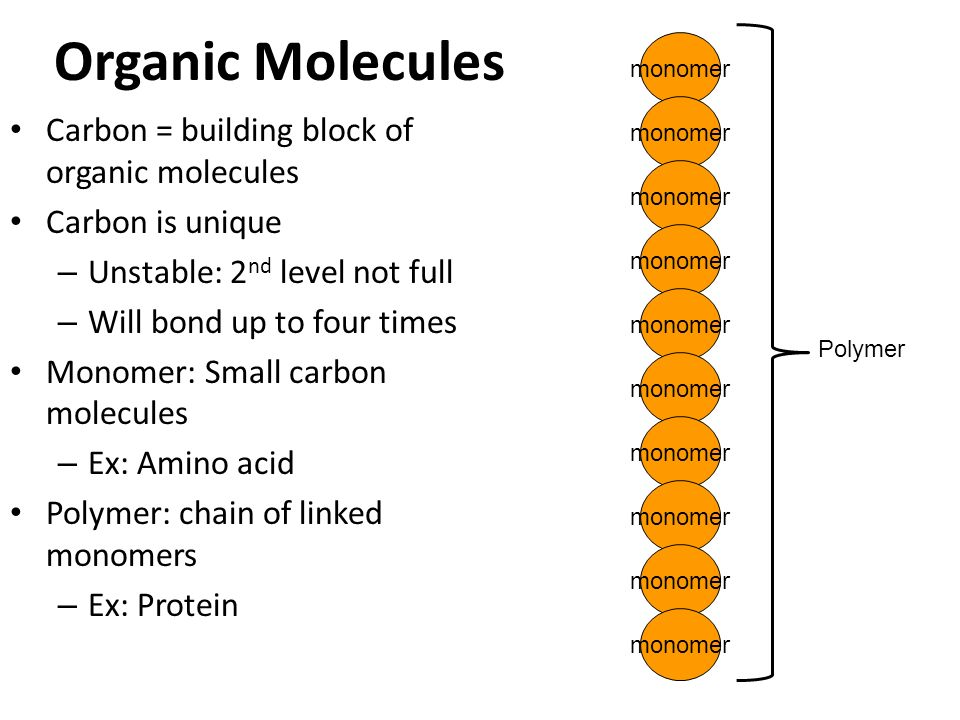 Organic Molecules Carbon = building block of organic molecules Carbon is unique – Unstable: 2 nd level not full – Will bond up to four times protons 6 electrons