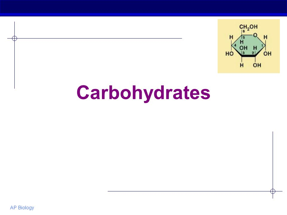 AP Biology Carbohydrates