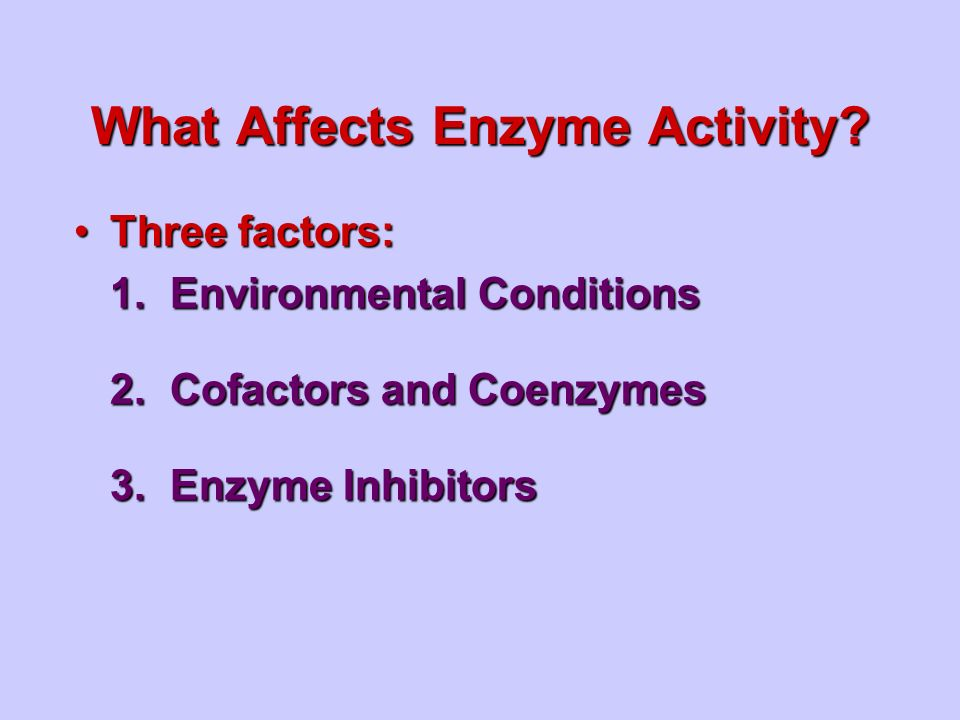 What Affects Enzyme Activity.