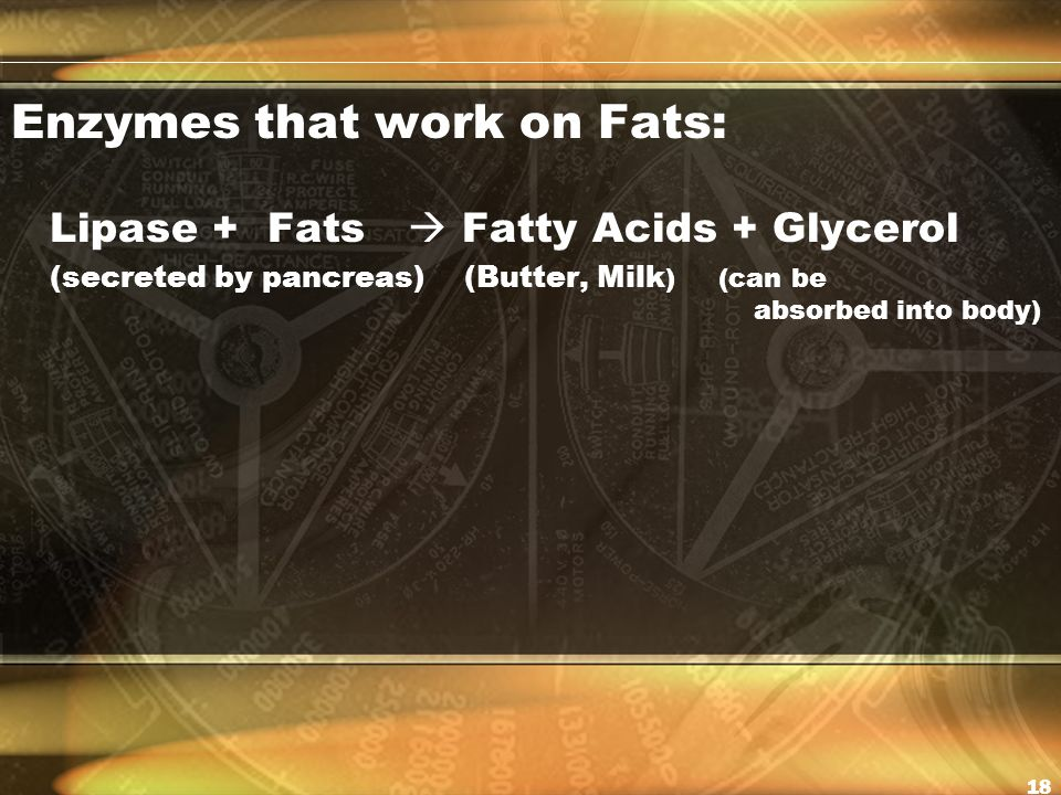 Enzymes that work on Fats: Lipase + Fats  Fatty Acids + Glycerol (secreted by pancreas) (Butter, Milk ) (can be absorbed into body) 18