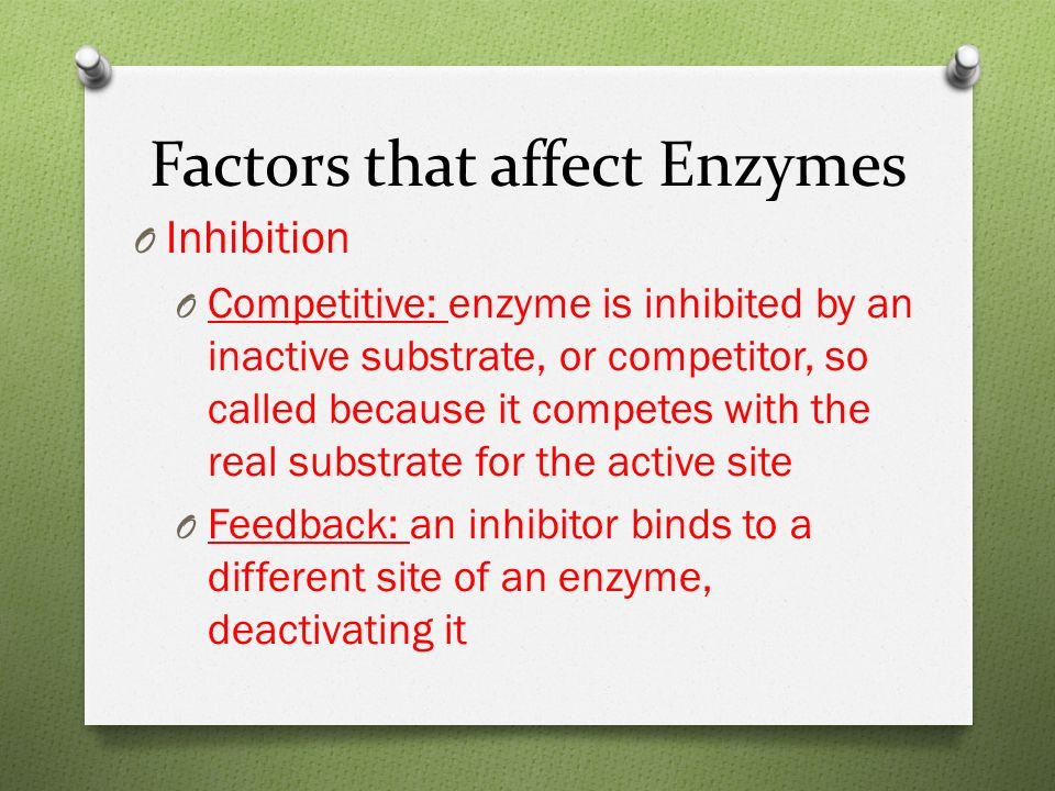 Factors that affect Enzymes O Inhibition O Competitive: enzyme is inhibited by an inactive substrate, or competitor, so called because it competes with the real substrate for the active site O Feedback: an inhibitor binds to a different site of an enzyme, deactivating it