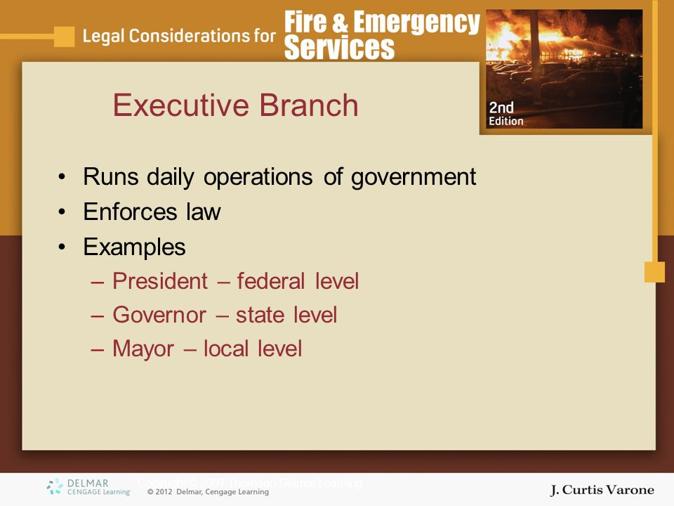 Copyright © 2007 Thomson Delmar Learning Executive Branch Runs daily operations of government Enforces law Examples –President – federal level –Governor – state level –Mayor – local level