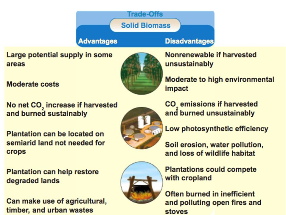 Renewable Resource: Biomass and Biofuels  What is biomass? Any