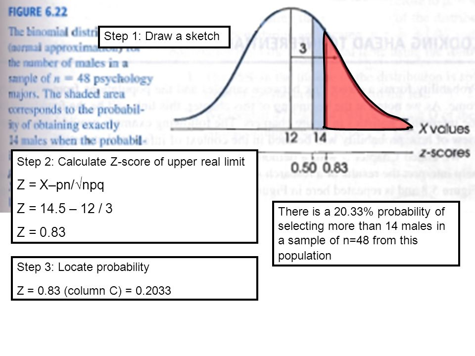 Step 1: Draw a sketch Step 2: Calculate Z-score of upper real limit Z = X–pn/√npq Z = 14.5 – 12 / 3 Z = 0.83 Step 3: Locate probability Z = 0.83 (column C) = There is a 20.33% probability of selecting more than 14 males in a sample of n=48 from this population