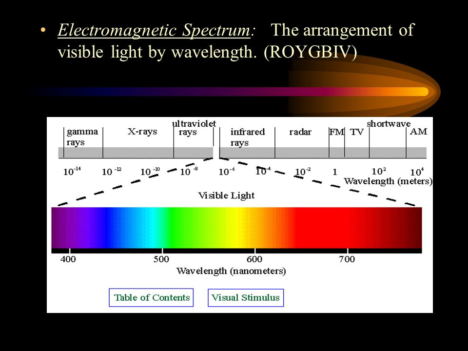 Electromagnetic Spectrum: The arrangement of visible light by wavelength. (ROYGBIV)