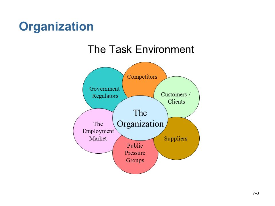 7–3 Organization The Task Environment The Employment Market Customers / Clients Public Pressure Groups Suppliers Government Regulators Competitors The Organization
