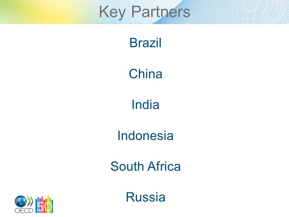 Key Partners Brazil China India Indonesia South Africa Russia