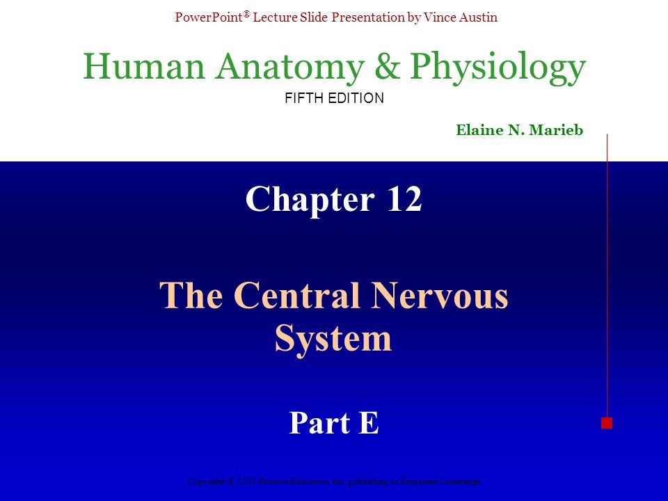 Human Anatomy & Physiology FIFTH EDITION Elaine N. Marieb PowerPoint ...