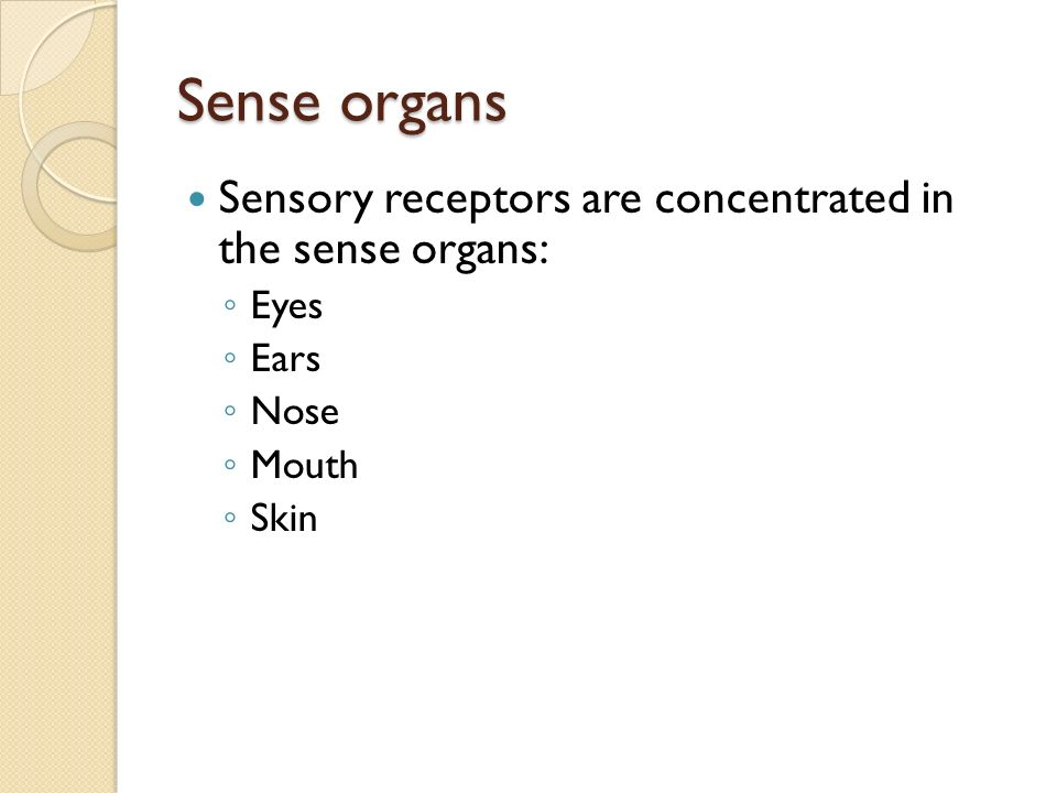 Sense organs Sensory receptors are concentrated in the sense organs: ◦ Eyes ◦ Ears ◦ Nose ◦ Mouth ◦ Skin
