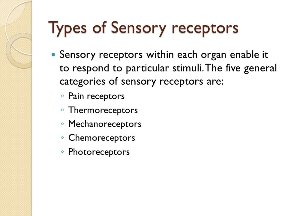 Types of Sensory receptors Sensory receptors within each organ enable it to respond to particular stimuli.