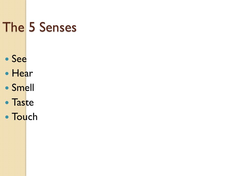 The 5 Senses See Hear Smell Taste Touch