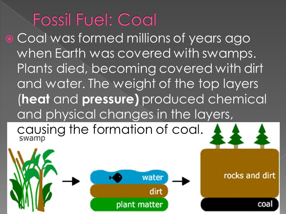  Coal was formed millions of years ago when Earth was covered with swamps.