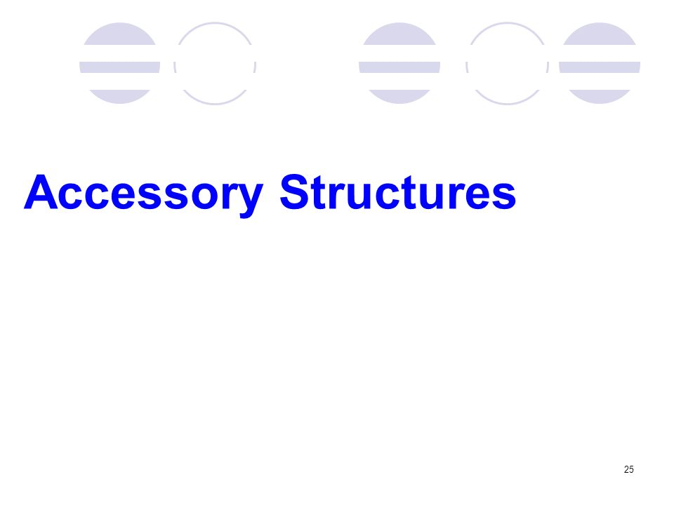 Accessory Structures 25