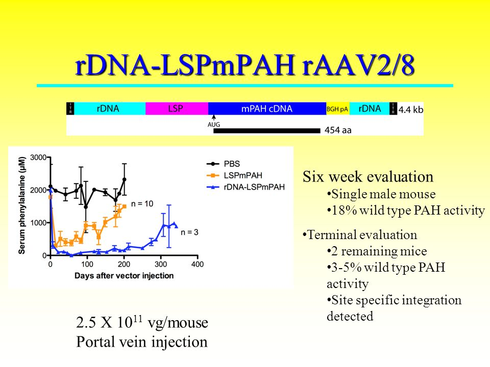 Advances in gene therapy for phenylketonuria (PKU) Cary O