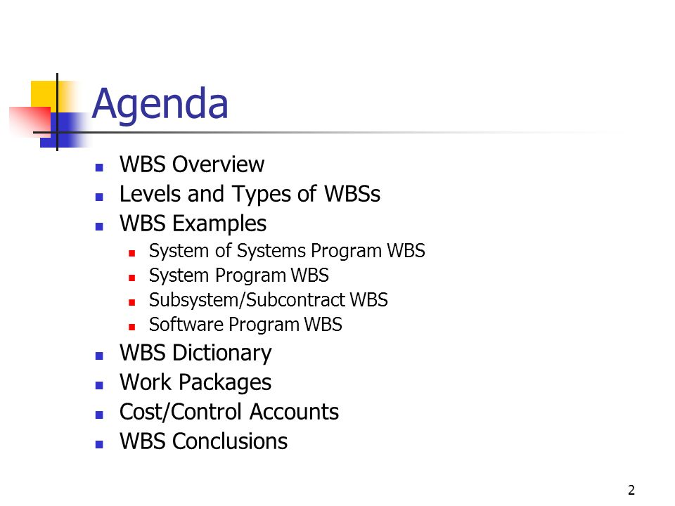 1 Lecture 3 1: Project Planning: Work Breakdown Structure (WBS) [SEF