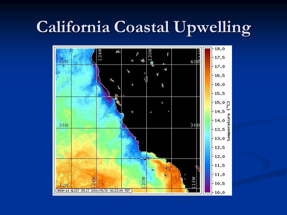 California Coastal Upwelling