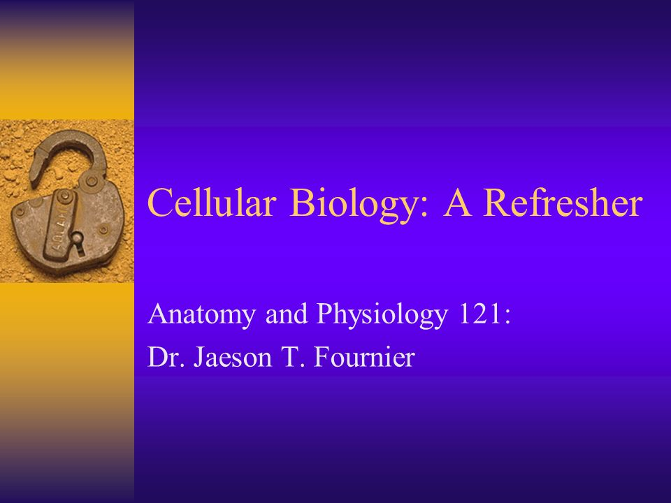Cellular Biology: A Refresher Anatomy and Physiology 121: Dr. Jaeson T. Fournier