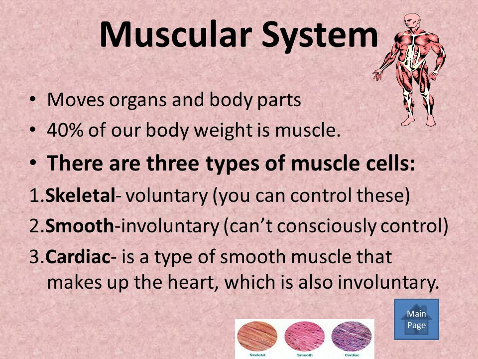 Human Body Systems 7 th grade Science Click here to begin