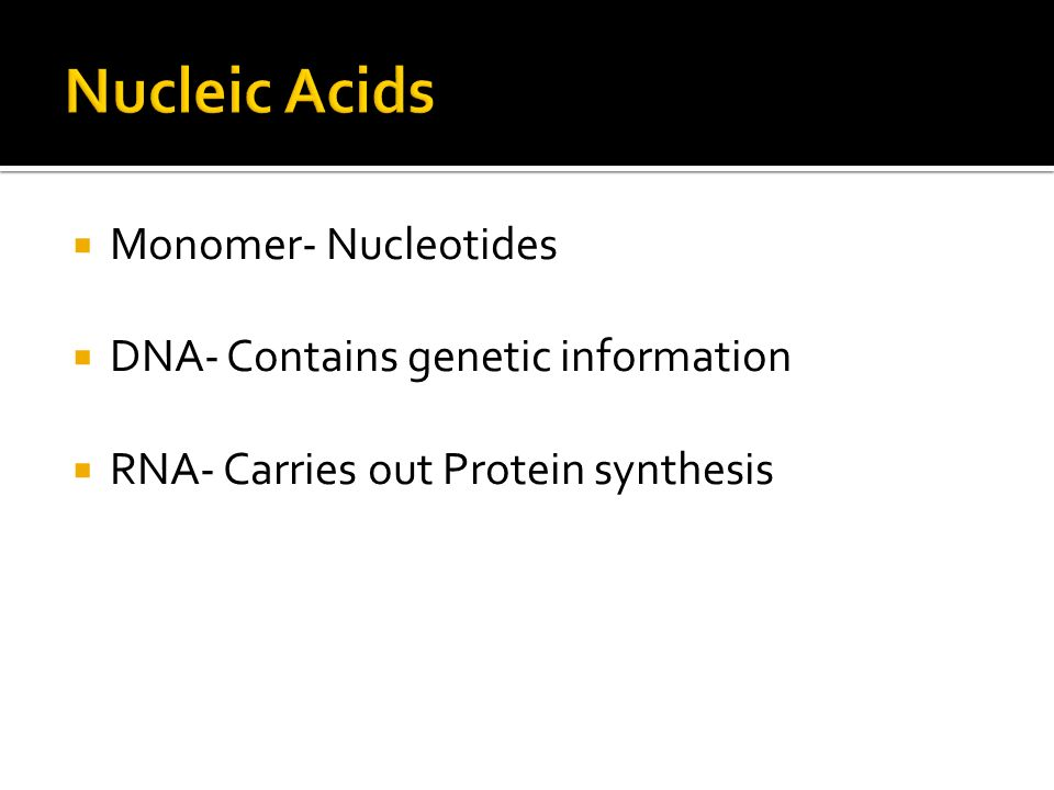  Monomer- Nucleotides  DNA- Contains genetic information  RNA- Carries out Protein synthesis