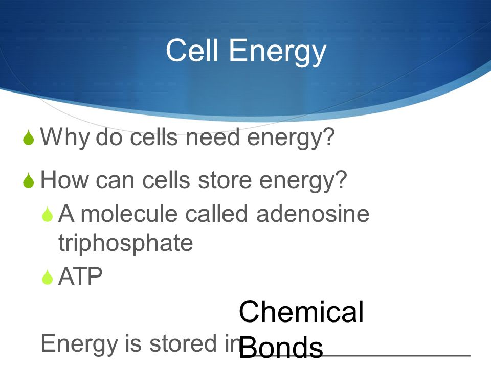 Cell Energy  Why do cells need energy.  How can cells store energy.