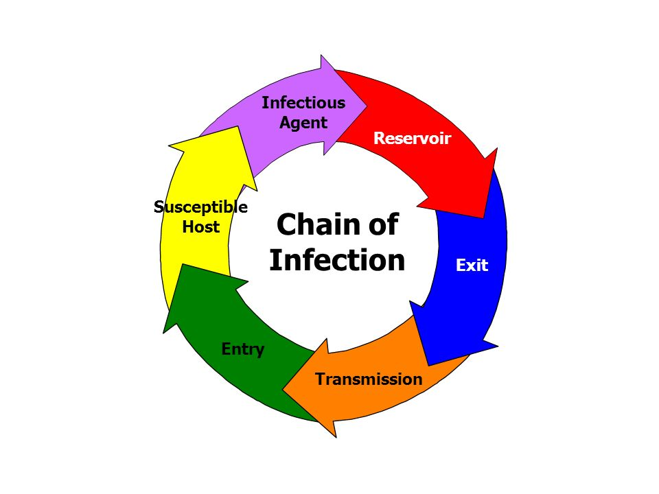 2 exit transmission entry susceptible host infectious agent reservoir chain  of infection