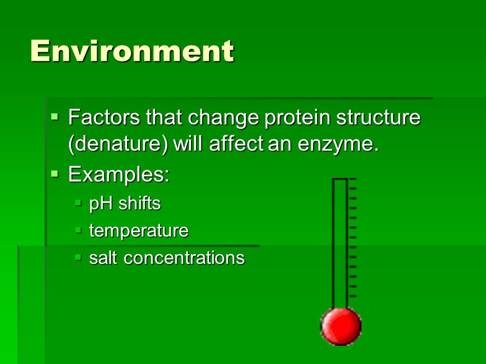 Environment  Factors that change protein structure (denature) will affect an enzyme.