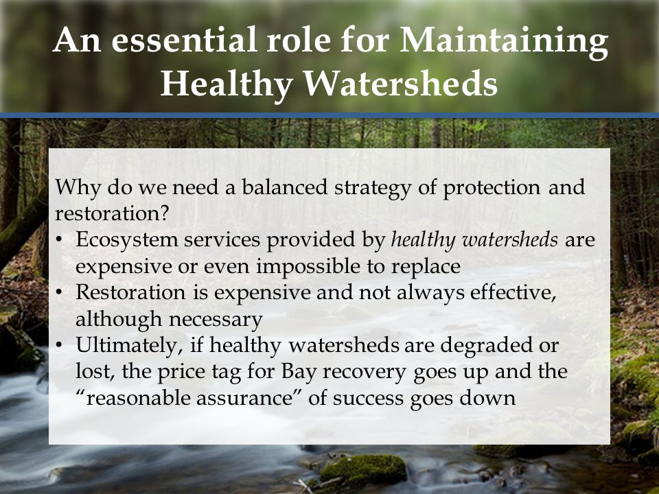 An essential role for Maintaining Healthy Watersheds Why do we need a balanced strategy of protection and restoration.