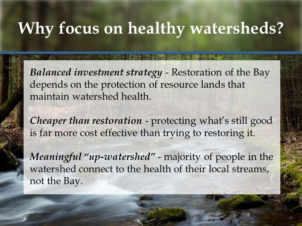 Why focus on healthy watersheds.