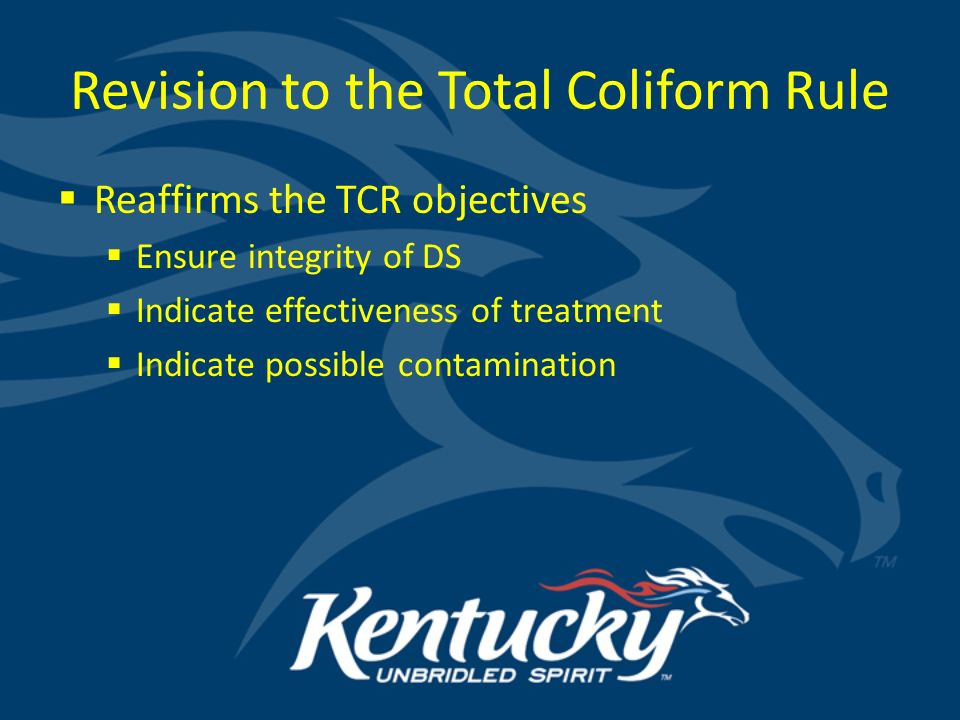 to protect and enhance kentucky s environment revised total coliform rh slideplayer com Total Coliform Sample Bottle Total Coliforms Acceptable Level