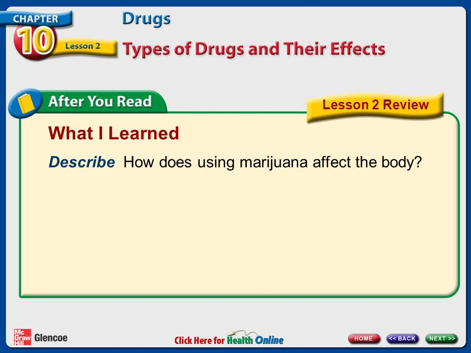 What I Learned Describe How does using marijuana affect the body Lesson 2 Review