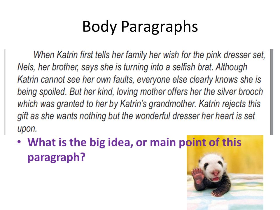 Body Paragraphs What is the big idea, or main point of this paragraph