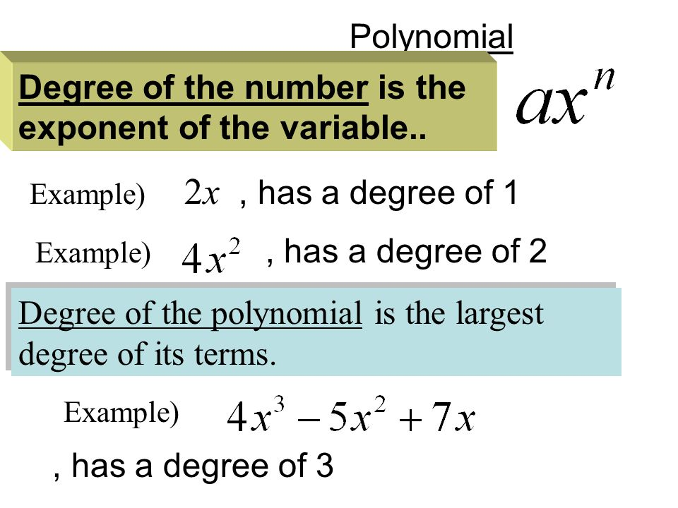 Polynomial Degree of the polynomial is the largest degree of its terms.