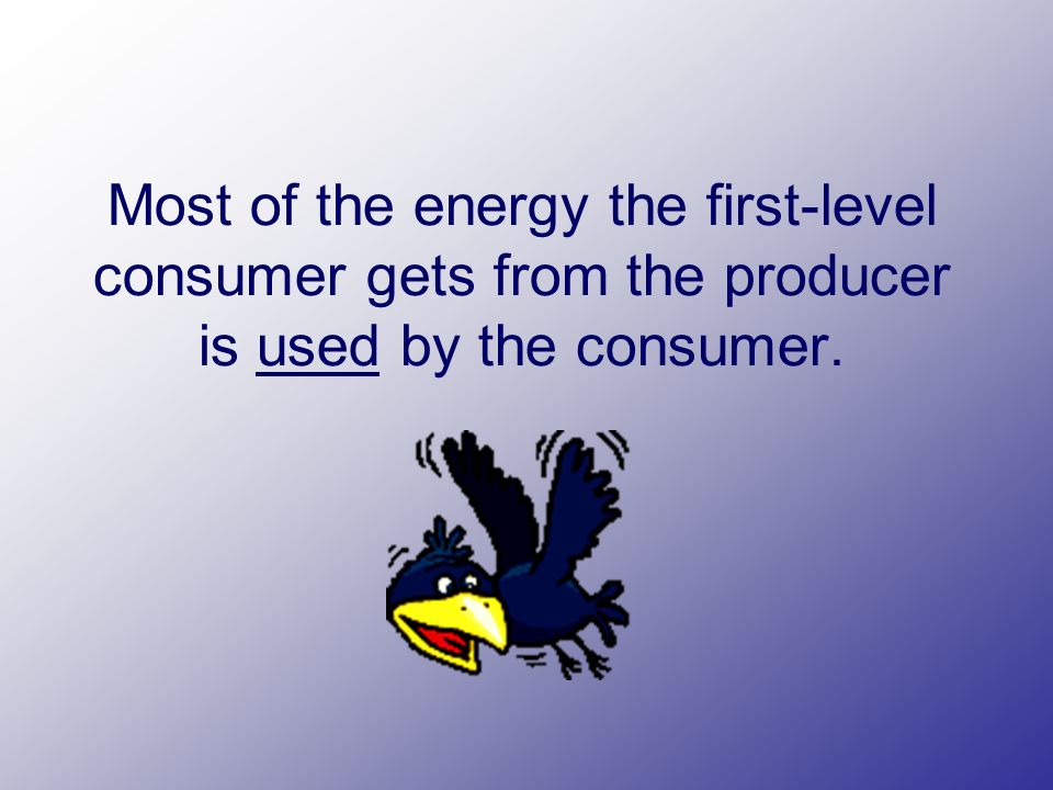 Most of the energy the first-level consumer gets from the producer is used by the consumer.