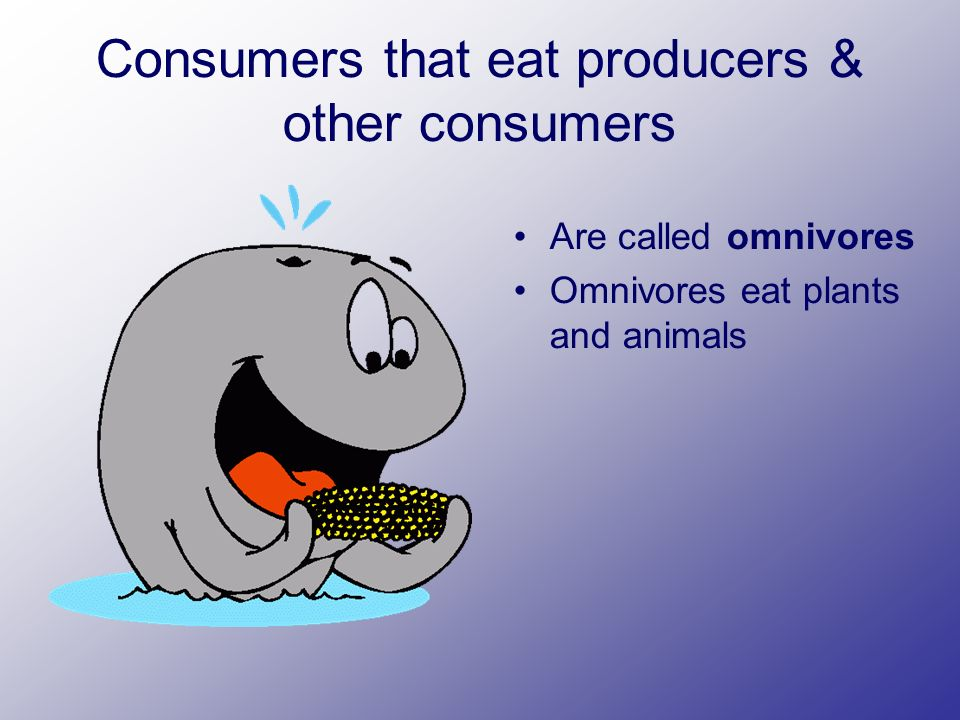 Consumers that eat producers & other consumers Are called omnivores Omnivores eat plants and animals