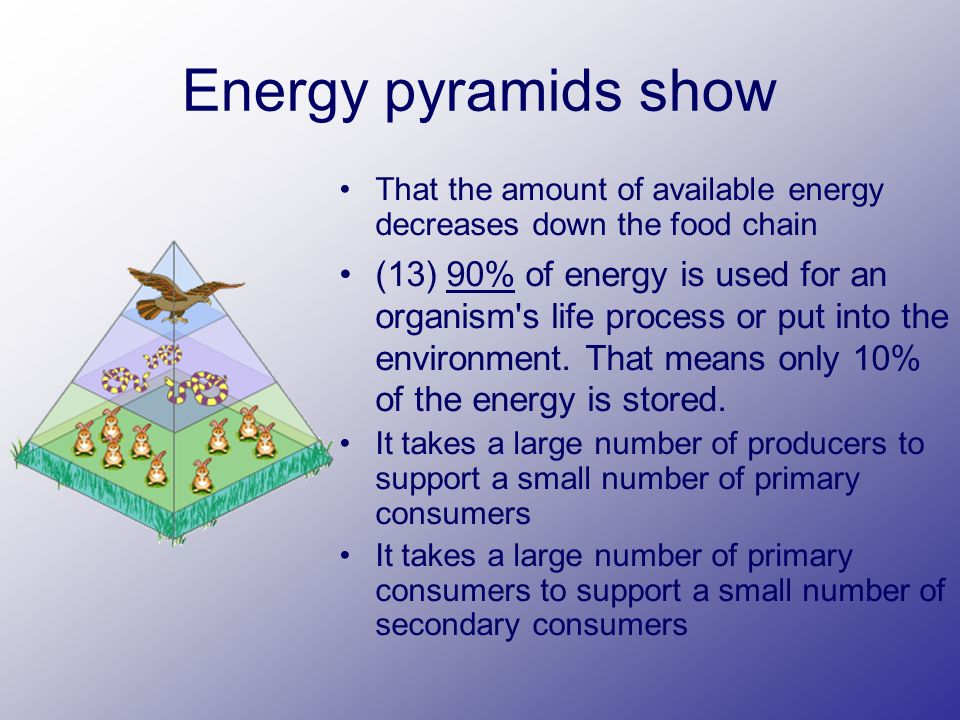 Energy pyramids show That the amount of available energy decreases down the food chain (13) 90% of energy is used for an organism s life process or put into the environment.