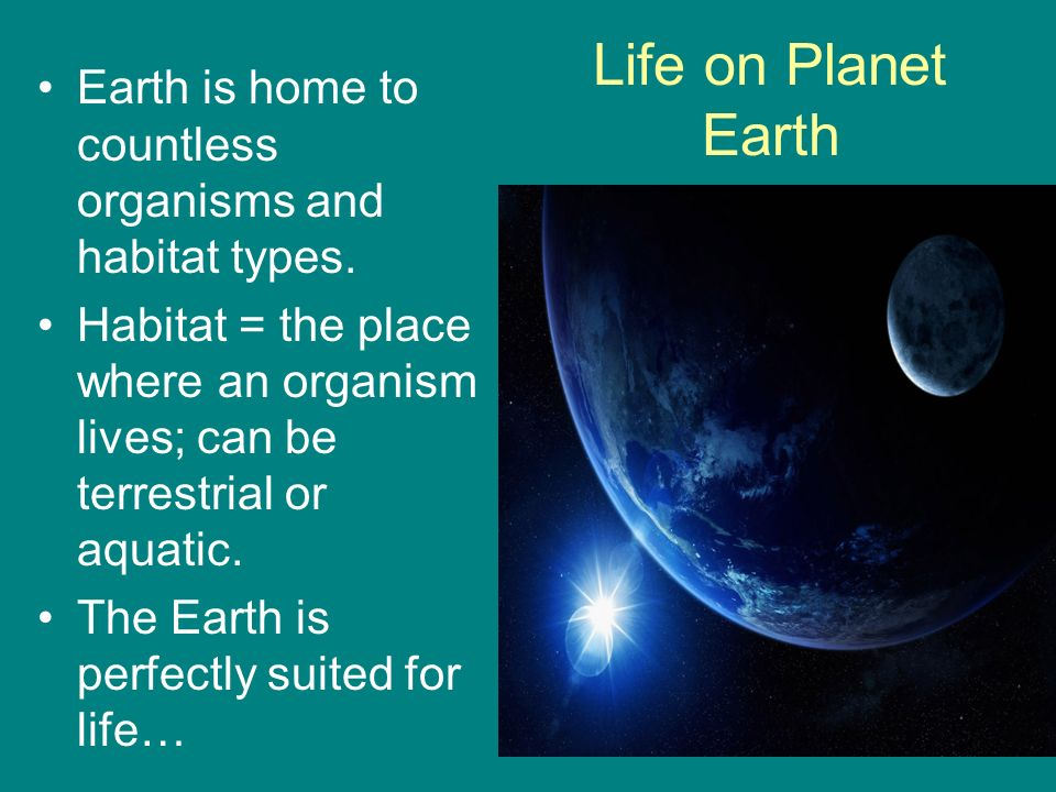 Life on Planet Earth Earth is home to countless organisms and habitat types.